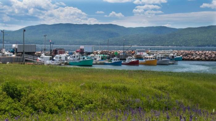 0710 Wharf at Igonish (1 of 1)