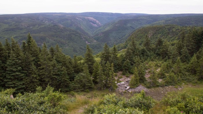 0711 Cabot Trail 3 (1 of 1)