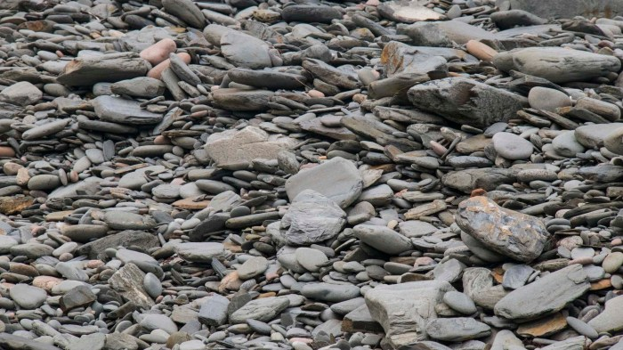 0711 Cape Breton Beach- (1 of 1)