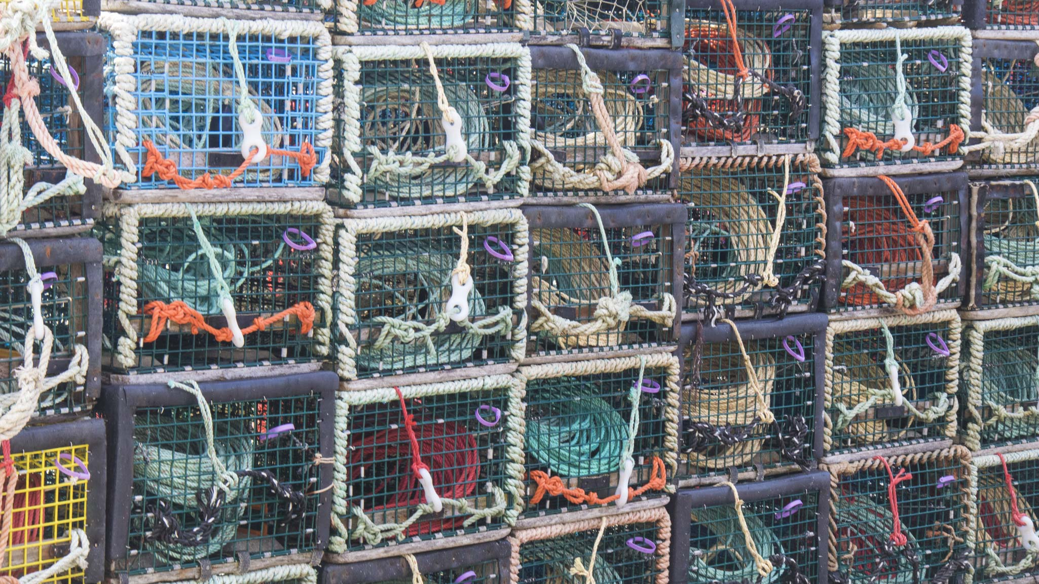 0718 Lobster Traps (1 of 1)