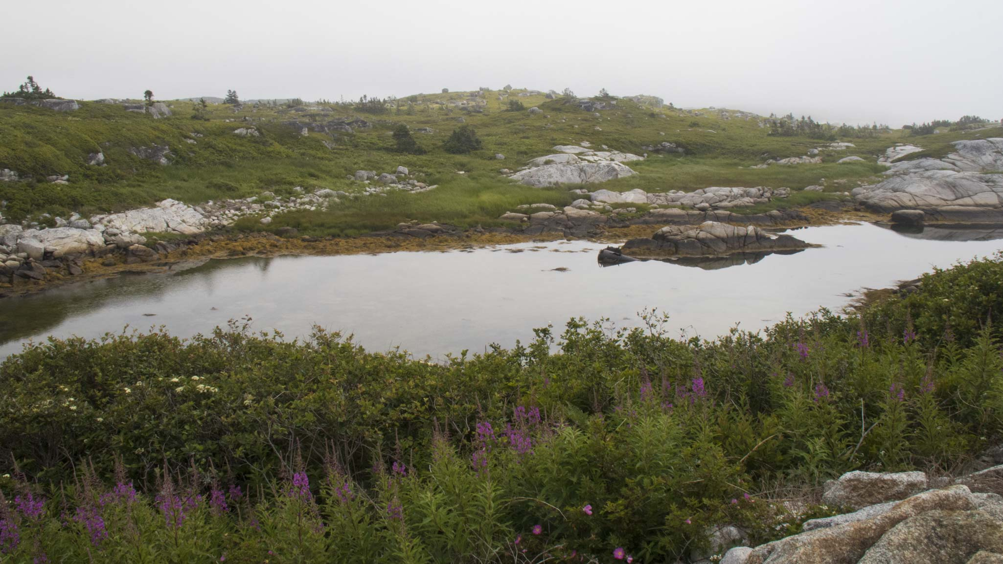 0718 Peggys Cove Landscape (1 of 1)