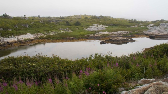 0718 Peggys Cove Landscape (1 of 1)